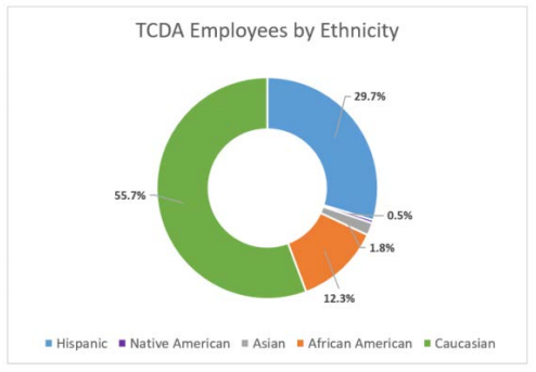 refer to table 3: TCDA employees by ethnicity
